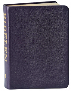 The Bible of The Testament's Apocryp Books